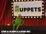 Los Muppets - Kermit en Argentina 04