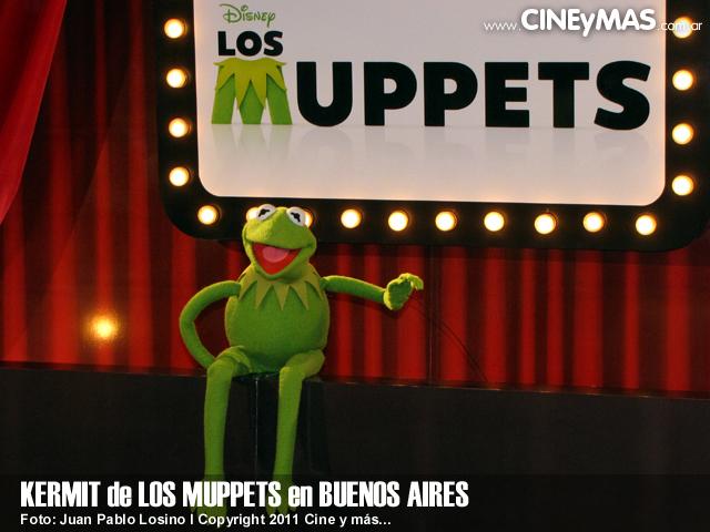 Los Muppets - Kermit en Argentina 05