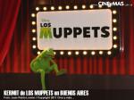 Los Muppets - Kermit en Argentina 08