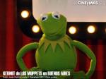Los Muppets - Kermit en Argentina 09