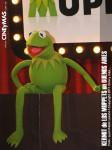 Los Muppets - Kermit en Argentina 11