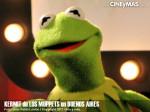 Los Muppets - Kermit en Argentina 13