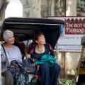 20th Century Fox - El Exotico Hotel Marigold
