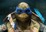 Tortugas Ninja 8