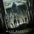 Afiche - Maze Runner - Correr o Morir