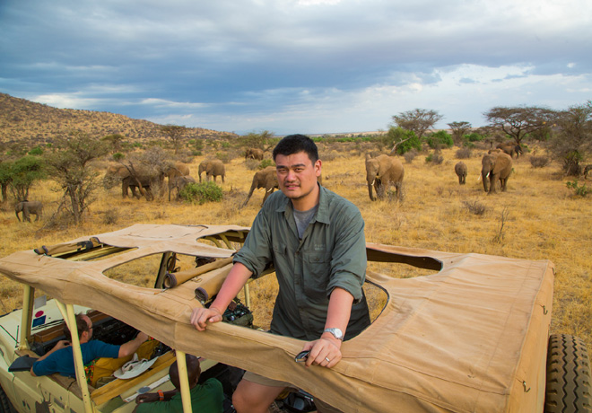 Animal Planet - Proyecto Yao Ming