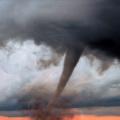 Nat Geo - Todo Sobre Tifones