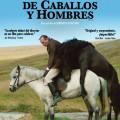 Afiche - Historias de Caballos y Hombres