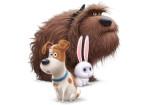 UIP - La Vida Secreta de tus Mascotas 4