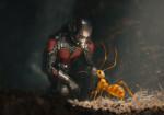 Ant-Man - El Hombre Hormiga 9