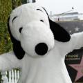 HWOF - Snoopy 1