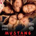 Afiche - Mustang - Belleza Salvaje