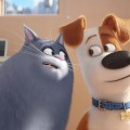 La Vida Secreta de tus Mascotas - The Secret Life of Pets