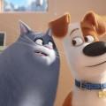 La Vida Secreta de tus Mascotas - The Secret Life of Pets