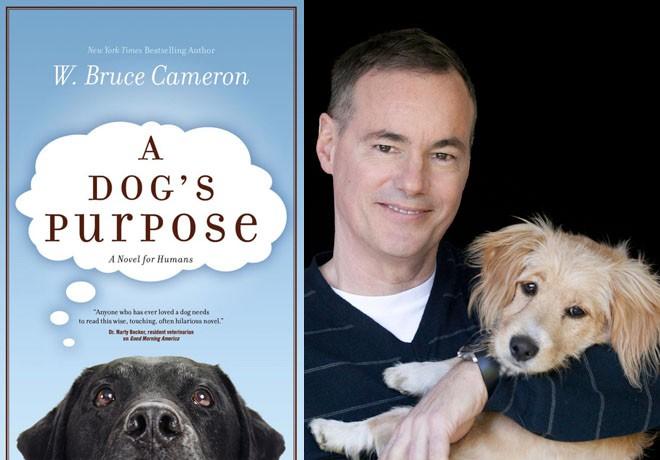 uip-la-razon-de-estar-contigo-w-bruce-cameron-a-dogs-purpose