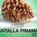 Pantalla Pinamar 2017 1