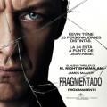 Afiche - Fragmentado