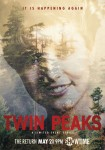 Showtime - Twin Peaks - Poster Laura Palmer