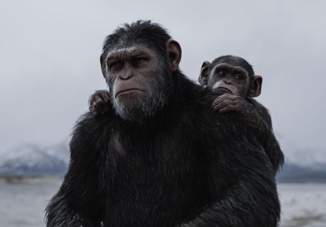 El Planeta de los Simios - La Guerra