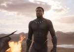 WDSMP - Black Panther - Pantera Negra 6