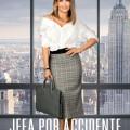 Afiche - Jefa por Accidente